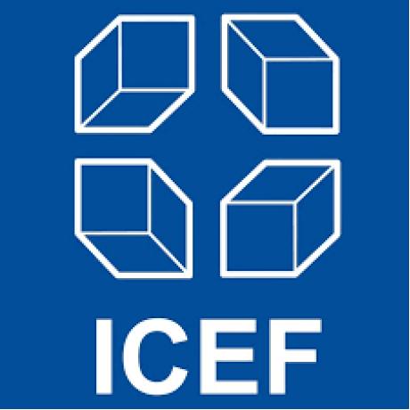 Участие  в международной конференции ICEF в Берлине